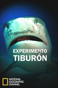 Experimento tiburón